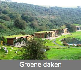 dakbedekiing groene daken