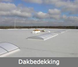 dakbedekking eindhoven